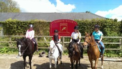 Things to do in Newry and Mourne - Horse Riding