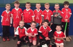 Craobh Rua Camlocha Hurling Club Notes  - 11th February 2018