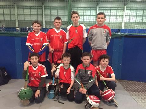 Craobh Rua Camlocha Hurling Club Notes - 28th January 2018