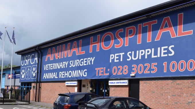 What's on: USPCA's Annual Open Day in Newry Animal Hospital